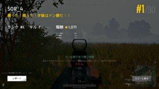 新環境『霧』新武器『Mini 14』でのドン勝